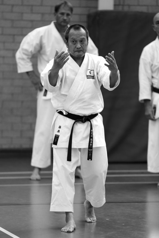 Fujiwara Hanshi Sydney April 2016